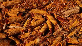 Jeremy Houchens, Photography, Corn