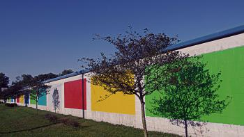Monon Love Train, Trees and Color